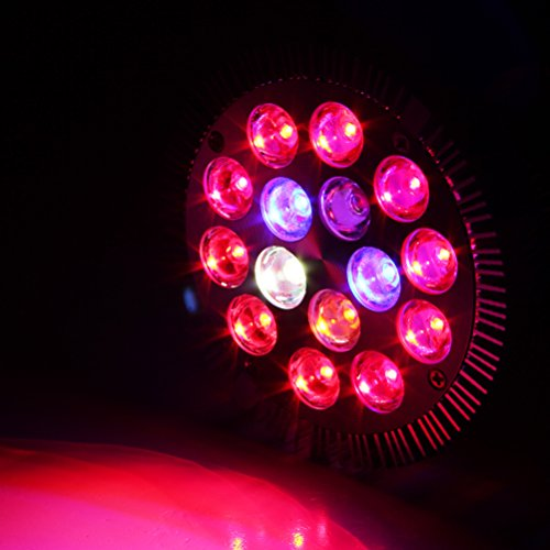 Xprite 15W Led Grow Light Bulb, Red Blue White & IR LED Grow Lamps E26 E27 for Indoor Plants in Garden Greenhouse Review