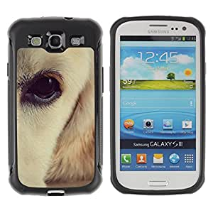 ZETECH CASES / Samsung Galaxy S3 I9300 / LABRADOR RETRIEVER WHITE BROWN EYE DOG / labrador perro perdiguero blanco marrón ojos perro / Robusto Caso Carcaso Billetera Shell Armor Funda Case Co