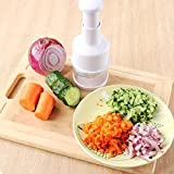 AllExtreme Vegetable Chopper and Slicer Dicer,Mini Hand Chopper Mincer with Cover for Vegetables-Tools For Your Kitchen
