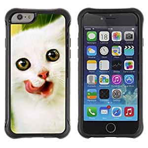 ZETECH CASES / Apple Iphone 6 / ANGORA VAN NORWEGIAN KITTEN WHITE / Angora Van Noruego gatito blanco / Robusto Caso Carcaso Billetera Shell Armor Funda Case Cover Slim Armor
