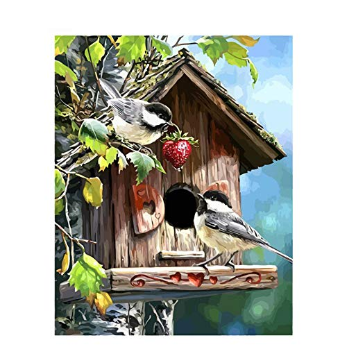 (JUNSZYH DIY Oil Painting,Beautiful Cute Bird House Scenery,Oil Paint Painting by Numbers DIY Picture Drawing Coloring On Canvas Painting by Hand Wall Paint by Number,40X50Cm No Frame)