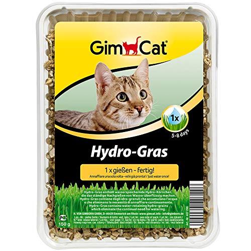 🥇 GimCat Hydro-Gras – Hierba para gatos de plantación controlada – De fácil cultivo en 5-8 días regando 1 sola vez – 1 bandeja