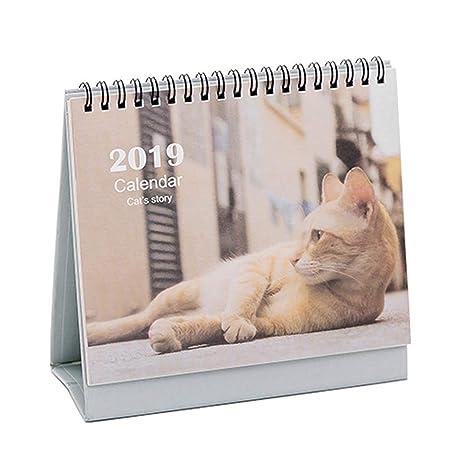 Calendario de escritorio creativo 2019 Calendario de escritorio, lindo gato [A]
