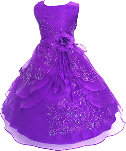 Shiny Toddler Big Girls Embroidered Beaded Flower Girl Birthday Party Dress with Petticoat 9t-10t,Purple