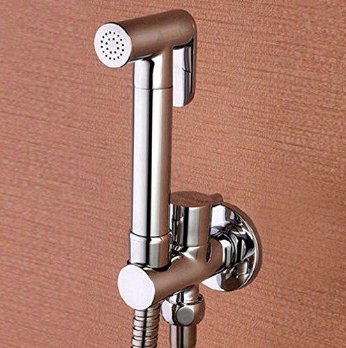Toilet Brass Hand Held Bidet Spray Shower - Ww.screwfix