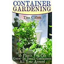 Container Gardening: 15 Plants You Can Grow In Small Containers All Year Around