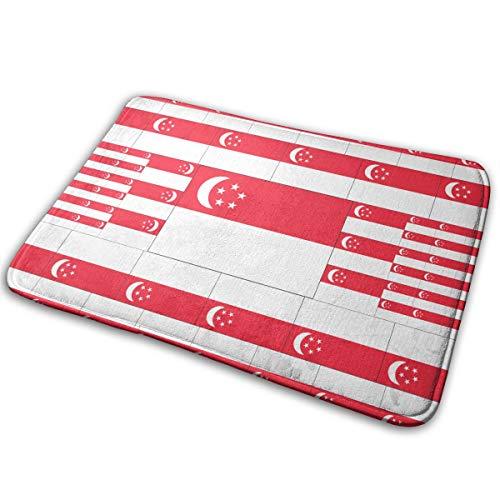OLOSARO Doormat Indoor Singapore Flag Home Kitchen Bathroom Outdoor Entrance Non-Slip Novelty Cute Funny 23.6