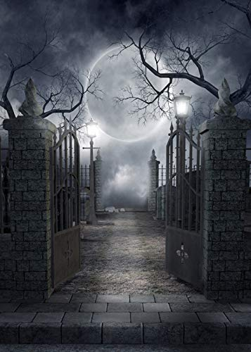 Ouyida Halloween Horror Night 6X9FT CP Pictorial cloth Photography Background Computer-Printed Vinyl Backdrop TP17 by OUYIDA (Image #4)