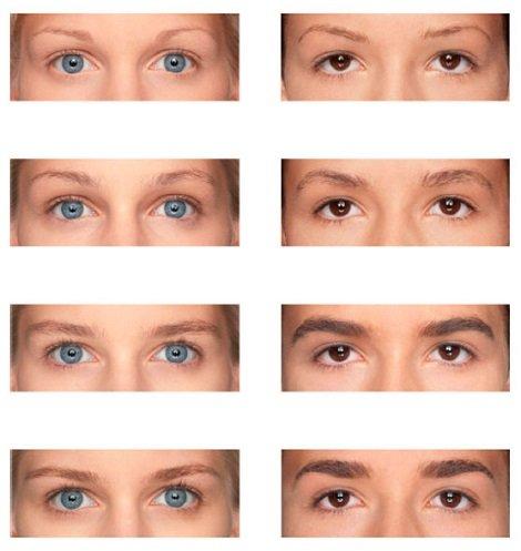 91fa53a7707cf8 M2 BEAUTE Eyebrows Renewing Serum 5ml & M2Beaute Gift Box | Eyebrows Growth  Serum: Amazon.co.uk: Beauty