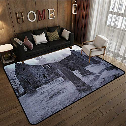 Rugs,Gothic Decor Collection,Old Gothic Cemetery Church Tomb and Tombstone Mysticism Spooky Forest Style,Cloudy Grey 78.7