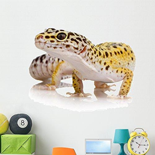 Wallmonkeys Leopard Gecko Wall Decal Peel and Stick Graphic (48 in W x 38 in H) WM290298 ()