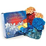 Grow Your Own Crystal Garden - Buy One Get One Free!