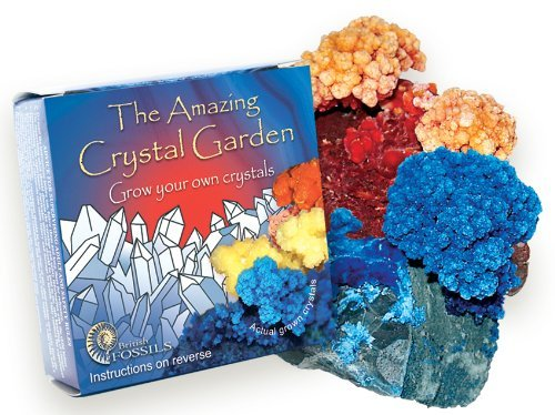 Grow Your Own Crystal Garden - Buy One Get One Free! by Fossil Gift Shop