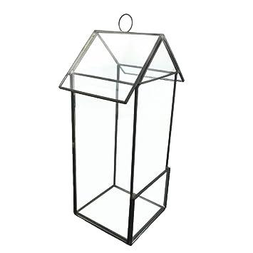 Mini Gewachshaus Glas Terrarium Feen Miniatur Garten Saftig Form