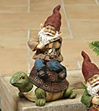 8'' Darling Little Garden Gnomes Playing a Musical Instrument and Sitting on a Garden Friend Figurine (Sitting on a Tortoise)