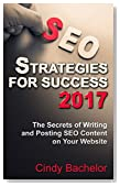 SEO Strategies for Success: The Secrets of Writing and Posting SEO Content on Your Website (How to Create Better Ranking Websites Series)