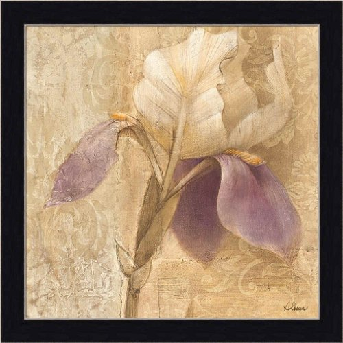 Brocade Purple Iris by Albena Hristova Contemporary Floral Wall Art Print Framed Décor (Purple Framed Iris)