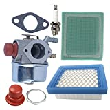 Hilom Carburetor Tune Up Kit For Tecumseh 640025 640025B 640025C 640004 640014 640117 640117A 640117B 640017 640135A OHH45 OHH55 OHH50 OHH60 OHH65 Snowblower Engine Carb ROTARY 13152 OREGON 50-653