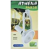 Liteline Corporation PAR222/38-WH Athena PAR38 Track Fixture, 120V, White