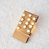 AMSKY Christmas Decor Lights Garland,Led Copper Wire Lamp String Ball Bulb Lamp String Outdoor Decorative Lamp Home Decor for Bedroom, Parties, Wedding, Decoration (G)