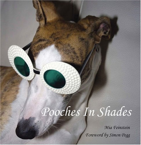 Pooches in Shades - Pucci Sunglasses
