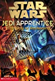 The Star Wars Jedi Apprentice #8: The Day Of Reckoning