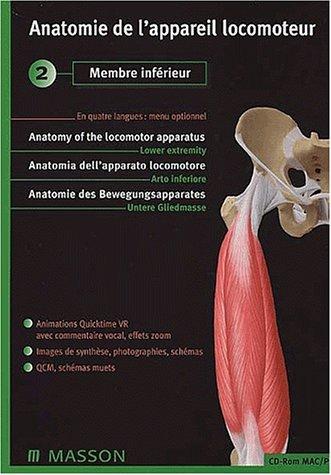 anatomie de l'appareil locomoteur cd 2 membre inferieur
