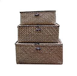 DOKOT Rectangular Handwoven Seagrass Storage Basket with Lid and Home Organizer Bins, Set of 3 (Set of 3(S+M+L), Khaki)