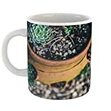 Westlake Art - Spa Plant - 11oz Coffee Cup Mug - Modern Picture Photography Artwork Home Office Birthday Gift - 11 Ounce (5955-0FA5A)