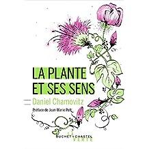 La Plante et ses sens - nouvelle édition (Écologie) (French Edition)