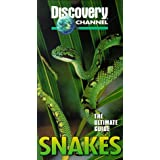 Ultimate Guide: Snakes
