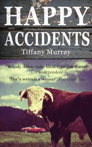 book cover of Happy Accidents