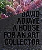 77e77: David Adjaye: A House for a Collector