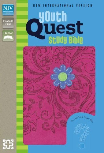 NIV, Youth Quest Study Bible, Imitation Leather, Pink: The Question and Answer Bible by Zonderkidz (2012-02-25)