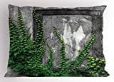 Ambesonne Mystic Pillow Sham, Ivy Plant on Wall Aged Antique Looking Picture Frame as a Window Creative Art, Decorative Standard Queen Size Printed Pillowcase, 30 X 20 inches, Green and Grey