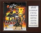 "NBA Cleveland Cavaliers LeBron James 2015-16 Finals MVP Plaque, Brown, 12 x 15"""