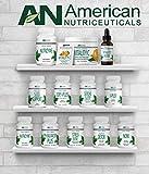 American Nutriceuticals – Noni – 60 Capsules
