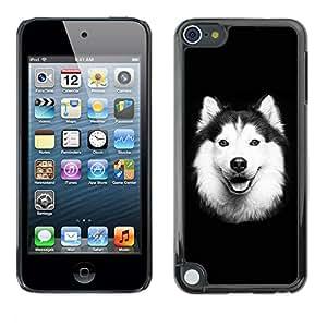 Paccase / SLIM PC / Aliminium Casa Carcasa Funda Case Cover - Alaskan Malamute Border Collie Dog - Apple iPod Touch 5