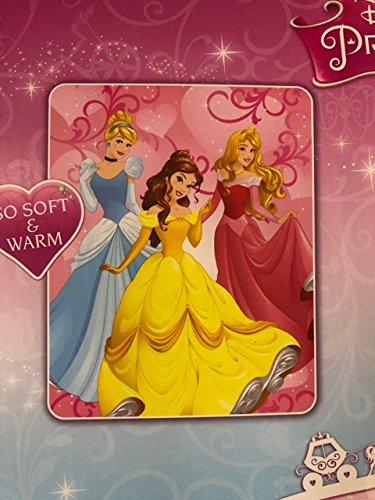 Disney Princess Open My Heart Royal Plush Raschel Throw 40 x 50 Blanket
