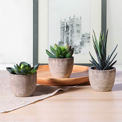 Künstliche-Sukkulenten-Pflanzen