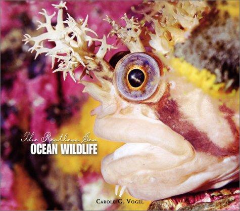 Download Ocean Wildlife (Restless Sea) pdf