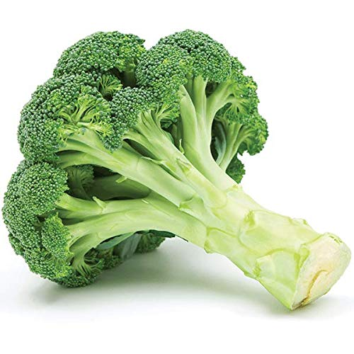 Broccoli Seeds (De Cicco), 300+ Premium Heirloom Seeds, ON SALE!, (Isla