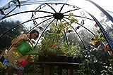 Tierra Garden TDI Sunbubble Parent