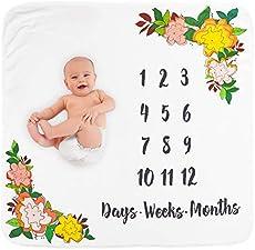 Infant Development 7 Month Milestones