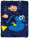 Disney Pixar Finding Dory, Bubbles in Water Micro Raschel Throw Blanket, 46'' x 60''