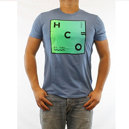 hollister-hco-logo-mens-graphic-t-shirt-tee-s-blue-4-tee