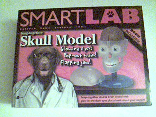 SmartLab - Snap-together Skull Model - Glowing Eyes! Pop-Out Brain! Flapping Jaw! (Together Model Skull)