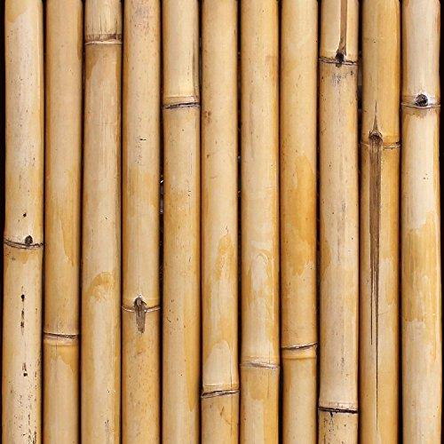 artgeist - Wallpaper Bamboo 19,3