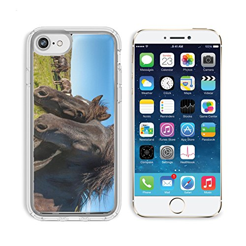 MSD Premium Apple iPhone 6 iPhone 6S Clear case Soft TPU Rubber Silicone Bumper Snap Cases Icelandic horses are rather small and very beautiful The breed was developed in Iceland - Shipping Iceland Us From To