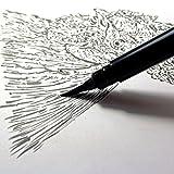 Pentel Arts Pocket Brush Pen, Includes 2 Black
